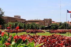 Texas Tech University Campus is beautiful!