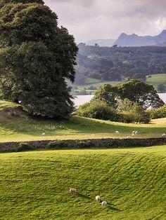 Sawrey, Lake District, Cumbria, England. Near Beatrix Potter's home.