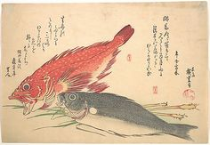 Isaki and Kasago Fish, from the series Uozukushi (Every Variety of Fish) Andô Hiroshige (Japanese, Period: Edo period Date: Culture: Japan Medium: Polychrome woodblock print; ink and color on paper Japanese Prints, Japanese Art, Japanese Animals, Vintage Japanese, Fine Art Prints, Canvas Prints, Framed Prints, Japan Painting, Fish Drawings