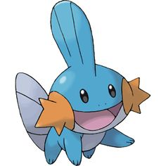 Mudkip-I don't know about you, but Mudkip had been my favorite pokemon for a pretty long time. Pokemon Memes, Pokemon Sun, Pokemon Cards, Pokemon Pokedex, Cool Pokemon Pictures, Water Type Pokemon, The Nerd, Pokemon Emerald, Pokemon Starters