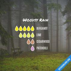 Blend Recipe: 5 drops Bergamot, 4 drops Lime, 2 drops Cedarwood, 1 drop Patchouli