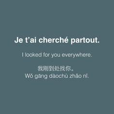 Je t'ai cherché partout. • /ʒə te ʃɛʁʃe paʁtu/ • I looked for you everywhere. • 我刚到处找你 • Wǒ gāng dàochù zhǎo nǐ.