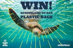 BREAKING: @queenslandlabor will BAN #PLASTICBAGS in 2018!   This comes as after 11,000 of us signed the #Queensland petition demanding the ban, meeting with Minister Steven Miles MP, and Ministers across the country.  State Environment Ministers are meeting RIGHT NOW. Sign the petition to make sure they all #BANTHEBAG today! ✊ Take Action NOW.  Big love to our friends at @boomerangalliance who helped make this happen. ❤️