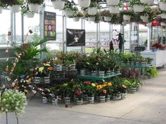 Big John's Farm Market & Greenhouse in Chicago Heights IL