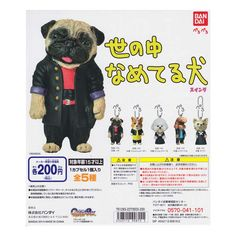 Licking dog swing all 5 species world set set Bandai gachapon cell phone strap accessories dogs pug