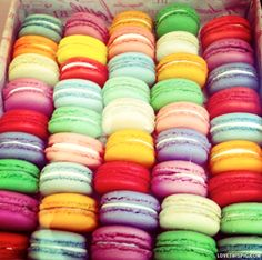 macaroons colorful food sweets macroons