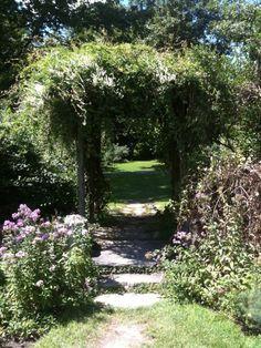 Ringwood botanical gardens