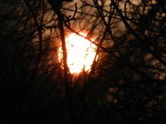 sunrise poking through