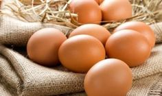 There are several different types of eggs. Thus, the nutritional value of the eggs can differ greatly. Pastured eggs are your best bet. enriched eggs will be your second best choice Egg For Hair, Best Fat Burning Foods, Ard Buffet, Eating Eggs, Skinny Mom, Sugar Detox, Boiled Eggs, Hard Boiled, Health Foods