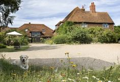 #RoomAuction Hotels: Everyone who's been here remembers the first time they saw Elvey Farm. It's at the end of a twisting, winding little lane, nestled amongst 75 acres of farmland in the prettiest countryside in #Kent. As far as the eye can see, there are fields, orchards and hills, with Pluckley's church spire in the distance.http://www.roomauction.com/