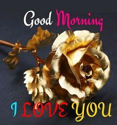 Lovely Good Morning Images, Good Morning Nature, Good Morning Happy Sunday, Good Morning Love, Good Morning Greetings, Good Morning Wishes, Good Morning Quotes, Robert Kiyosaki, Tony Robbins