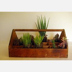 use old tool box as planter, i LOVE this just with different flowers!