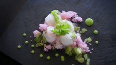 Florence fennel sorbet with lemon, crystalized port wine reduction & parsley, mint gel por uwe spätlich