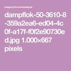 dampflok-50-3610-8-359a2ea6-ed04-4c0f-a17f-f0f2e90730ed.jpg 1.000×667 pixels