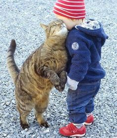 This kitty clearly has a thing for the little human.