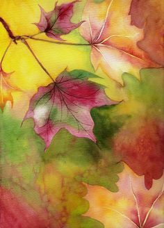 A Watercolor study in Fall leaves using M.Graham watercolor paints. Salt and alcohol pattern techniques applied for texture.  This Paintin...