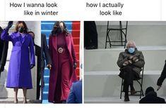Bernie's Mittens comparison to Kamala and Michelle