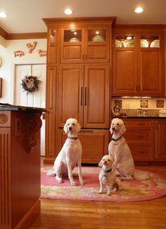 Brown/Nilon Kitchen 8 - traditional - kitchen - dc metro - Cameo Kitchens, Inc.