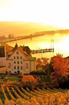 Rapperswil Switzerland Fine Art Print