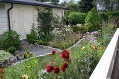 side garden  // MIN VILLAHAGE: Om hagen