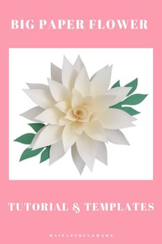 Need paper flower template for paper flowers crafts? Don't miss out this one, easy to make with my templates, instructions and video tutorial. #paperflowerscraft #paperflowertemplatesvg #paperflowerprintable #paperflowersvg #paperflowercricut #flowertemplatesvg #paperflowersdiy #paperflowertutorial #paperflowerseasy Big Paper Flowers, Paper Flower Backdrop, Giant Paper Flowers, Flower Svg, Flower Crafts, My Flower, Large Paper Flower Template, Paper Flower Tutorial, Leaf Template
