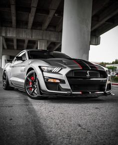 2006 Ford Mustang, Mustang Cars, Shelby Mustang, Fast Sports Cars, Sport Cars, Gt Cars, Race Cars, Shelby Gt 500, Mercedez Benz