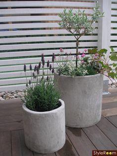 - All For Backyard Ideas Little Gardens, Back Gardens, Terrace Garden, Garden Planters, Outdoor Plants, Outdoor Gardens, Garden Styles, Dream Garden, Garden Inspiration