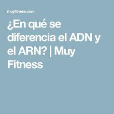¿En qué se diferencia el ADN y el ARN? | Muy Fitness