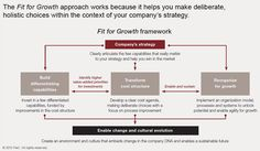 Fit for Growth   A guide to strategic cost cutting, restructuring, and renewal
