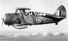 Curtiss Cleveland Mk. I of the Royal Air Force flying over Canada.