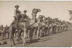 Germans in Southwest Africa had certain troops mounted on camels. One such unit is in formation here. German East Africa, West Africa, South Africa, Colonial, Rare Historical Photos, Carthage, Camels, Folk Music, Troops