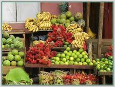 madagascar fruits - Google Search