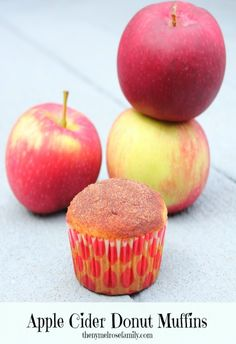Apple Cider Donut Muffins. A QUICK and EASY recipe!