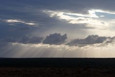 Lovely sunset with sun beams in the clouds  Lovely sunset with sun beams in the clouds over Addo.