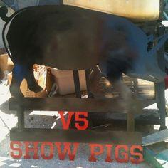 4-h FFA show pigs