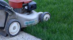 Come Rinforzare il Prato dopo il Taglio   Bestprato Lawn Mower, Outdoor Power Equipment, Portion Plate, Lawn Edger, Grass Cutter, Garden Tools