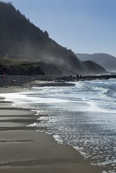 Bob's Creek Wayside ~ Oregon Beaches