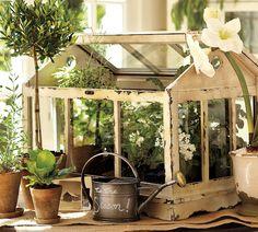 A Tabletop Greenhouse for Growing Herbs Pottery Barn Greenhouse Terrarium Wooden Greenhouses, Mini Greenhouse, Miniature Greenhouse, Greenhouse Ideas, Miniature Gardens, Fairy Gardens, Creation Deco, Garden Terrarium, Deco Floral