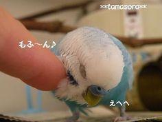 えへへ♪2009.7.29.JPG