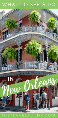 The ultimate travel guide to New Orleans. What to see and do in the Big Easy, when to go, where to stay and how to save money with free things to do in the city via @thetravelbunny