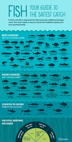 Protein-rich fish is important for fetal and early childhood development. This chart makes it easy to choose the healthiest options for your growing family. Updated FDA guidelines make it simpler to choose lower-mercury fish that's safe for kids. Pescatarian Diet, Pescatarian Recipes, What Is A Pescatarian, Fish Chart, Healthy Options, Healthy Recipes, Fish Recipes, Recipies, Seafood