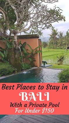 Where to stay in Bali with a private pool for cheap. Top hotels and villas in different areas in Bali including #Ubud #Seminyak #Canggu and #Kuta #Bali #Villas #accommodation #hotel #hotels #affordable #cheap #luxury #privatepool #privatevilla #indonesia #asia #travel #holiday #trip #vacation