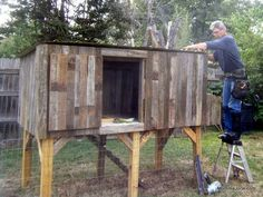 Chicken coop project - part 3
