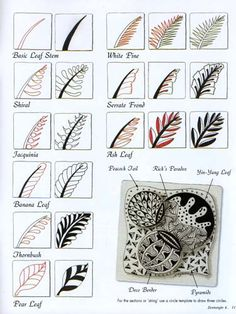 Zentangle pattern tutorials