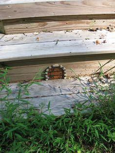 fairy door on steps (or mouse door!)