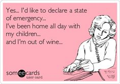 Yes... I'd like to declare a state of emergency... I've been home all day with my children... and I'm out of wine...