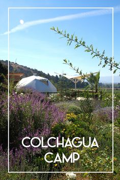 DECO TOUR: Colchagua Camp - The Deco Journal
