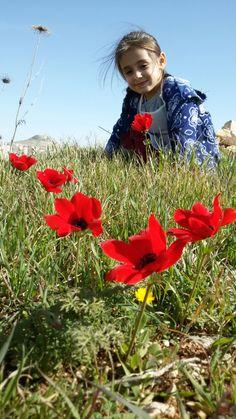 Judaean Desert Spring near Herodion