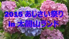 【富山散策物語】 2015 あじさい祭り in 太閤山ランド