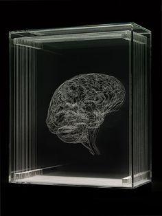 Angela Palmer 'Self Portrait' 'Brain of the Artist' engraved glass